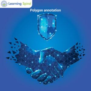 Polygon Annotation