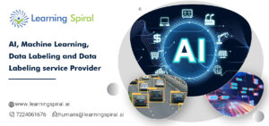 Data Labeling Service Provider